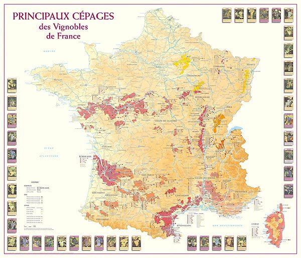 principaux cépages des vignobles de france, carte des vins