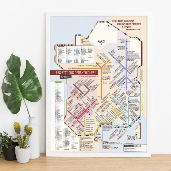 Carte de France des IGP Géovitis Les Stations Originale 40x60